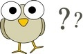 question bird