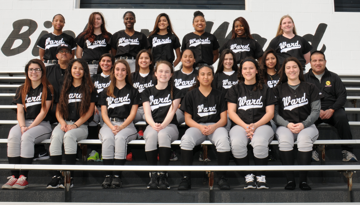 1563459411-softball_team_2016