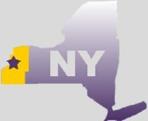 New York state with Pioneer District area highlighted
