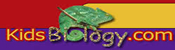 Kids Biology Website Icon