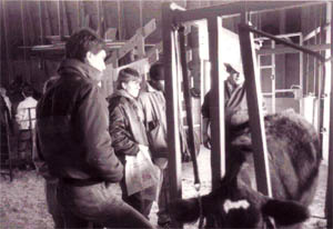 Black and white photo of students taking care of cow