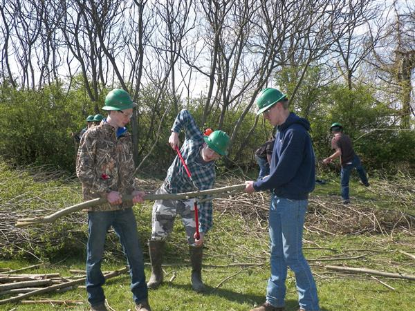 Three students working together to cut willows
