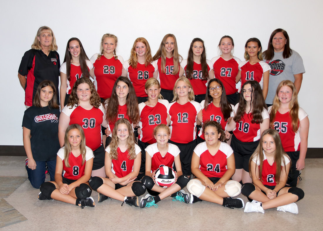 Junior High Volleyball team picture