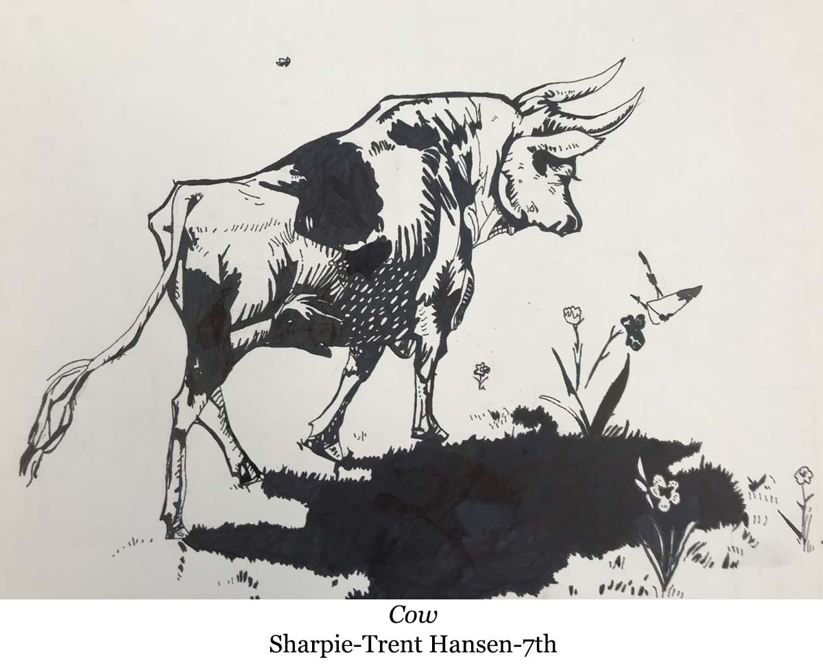 1587088200-cow-sharpie-trent_hansen-7th