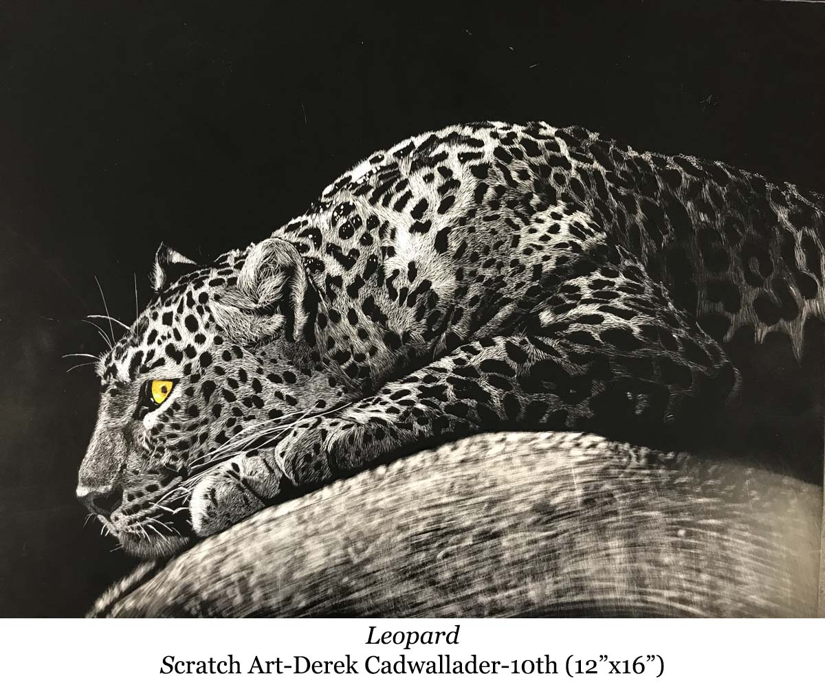 1587093406-leopard-scratch_art-derek_cadwallader-10th__12_x16__