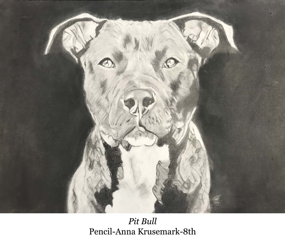 1588002941-pit_bull-pencil-anna_krusemark-8th