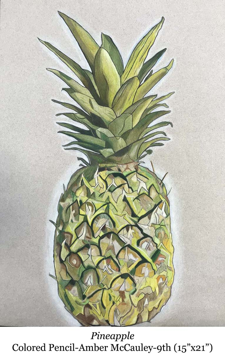 1588002942-pineapple-colored_pencil-amber_mccauley-9th__15_x21__