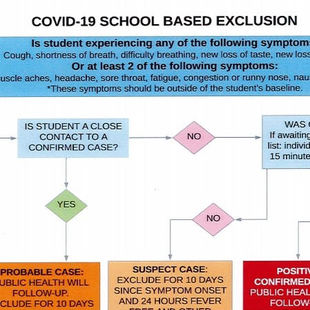 COVID-19 Exclusion Flow Chart