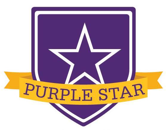 Content_1554378286-purple_star