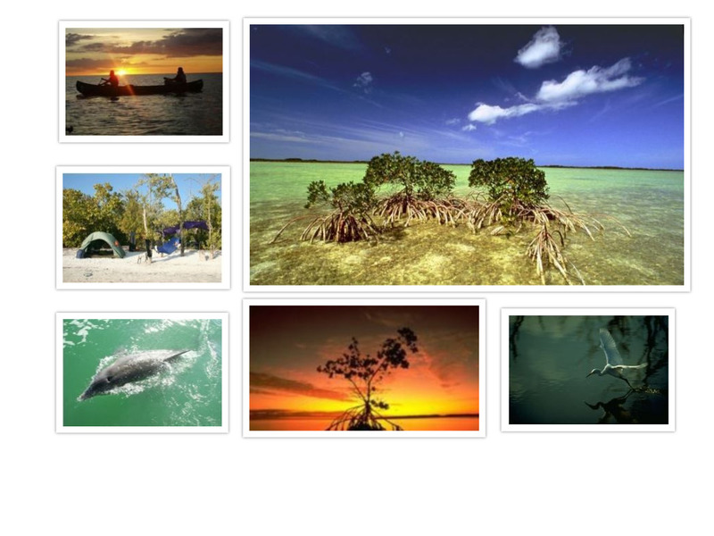 Content_1563571692-optimized-everglades-collage