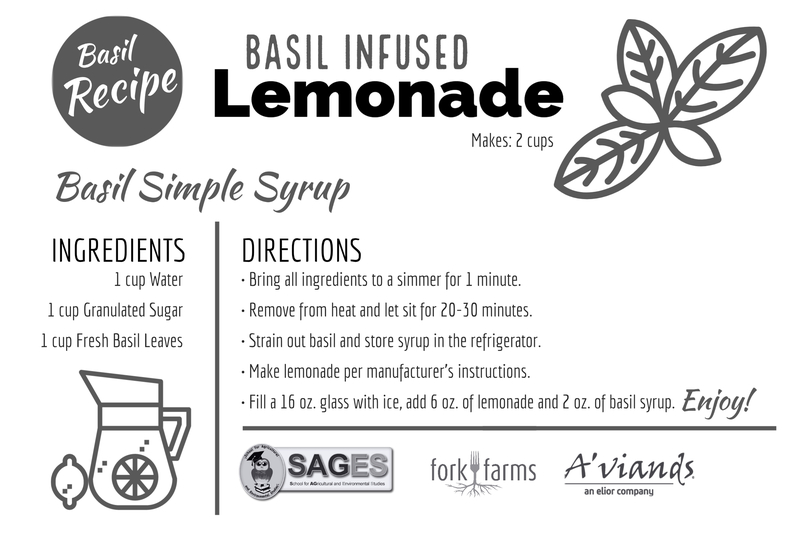Content_1591195302-basil_infused_lemonade
